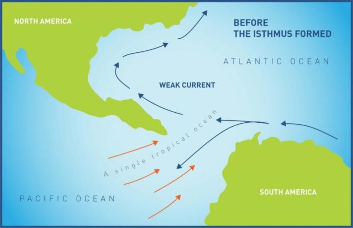 판구조 및 화산활동에 의해 파나마 지협이 바다에서 솟아오르기 전에 중앙아메리카 해로는 대서양과 태평양을 하나의 커다란 대양으로 연결시켜주었다. 스미소니언의 연구자들은 파나마 지협의 융기가 언제, 그리고 어떻게 일어났는지에 대해 계속 논쟁하고 있다. Credit: Smithsonian Tropical Research Institute