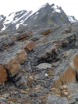 스피츠베르겐 페스트닝엔 단면에서 보이는 캅 스타로스틴 층의 모습니다. 가장 위쪽에 있는 세 개의 석회암층은 페름기 중기의 대량멸종을 기록하고 있다. 고위도 지역에서는 처음으로 발견된 기록이며 이것을 고려하면 페름기 중기 대멸종은 전지구적이었던 것으로 보인다. Credit: Photographer: Dierk Blomeier. For David P.G. Bond and colleagues, GSA Bulletin, 2015.
