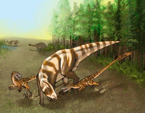 사우로르니톨레스테스 술리바니 (Saurornitholestes sullivani) 두 마리가 거의 다 자란 하드로사우루스류 파라사우롤로푸스 투비켄 (Parasaurolophus tubicen) 을 공격하고 있다. Credit: Illustration by Mary P. Wiliams