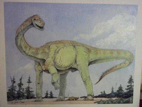 맨체스터 대학의 전문가들이 요크셔 해변에서 발견된 화석 뼈가 영국에서 가장 오래된 용각류 공룡이라는 것을 밝혀냈다. Credit: Jason Poole