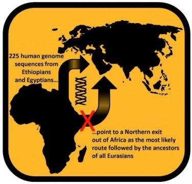 에티오피아인과 이집트인 225 명의 유전체 서열을 분석한 결과 유라시아 전역에 퍼져있는 인류의 조상들은 아프리카에서 이주해 나올 때 북쪽을 통해 나왔을 가능성이 가장 높은 것으로 나타났다. Credit: Luca Pagani