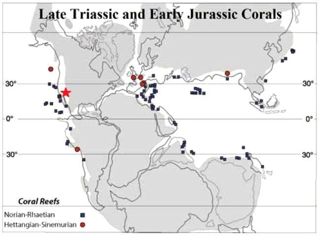 호지스와 스탠리의 논문 그림 6. 회색은 판게아의 지도, 파란색은 트라이아스기 후기의 산호초, 붉은색은 쥐라기 초기의 산호초. 별은 퍼거슨힐 층원 산호. 자료는 팔레오리프 데이터베이스. 지도는 Lathuilière and Marchal, 2009. CREDIT: Hodges and Stanley, 2015, GSA Today, and Lathuilière and Marchal, 2009.