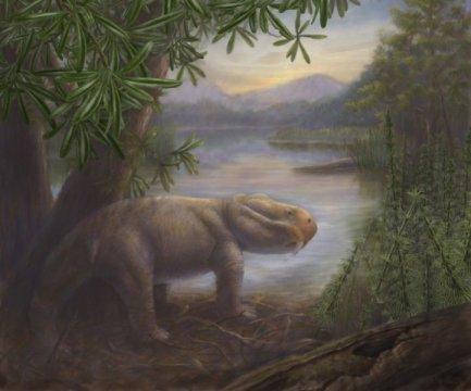 이 시기의 멸종에서 살아남은 가장 유명한 동물인 리스트로사우루스가 보이는 페름기 후기의 모습. Credit: Copyright California Academy of Sciences and Marlene Hill Donnelly