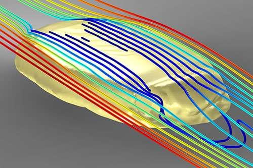 프로토킨크투스 만실라엔시스의 3D 모델 주위로 물이 흐르는 모습을 보여주는 컴퓨터 시뮬레이션. Credit: I.A. Rahman