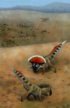 과시 중인 프로토케라톱스 안드레우시 성체를 상상한 복원도. 다 자라지 않은 개체들이 배경에 보인다. Credit: Rebecca Gelernter / QMUL