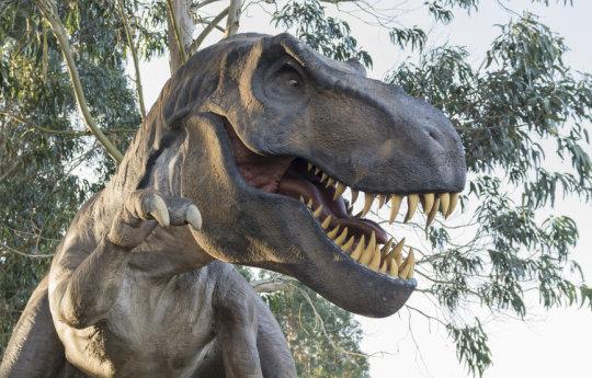 티라노사우루스 렉스 모형 (스톡 이미지). 한 연구팀이 유태반류 포유류 -- 오늘날 인간을 포함해 5천 종이 속하는 -- 의 진화 속도가 멸종 사건 이전에는 일정했으나 그 이후에는 폭발적으로 빨라져 오늘날 우리가 보는 다양한 종류의 포유류가 생겨났다는 것을 알아냈다. Credit: © Sergio Martínez / Fotolia